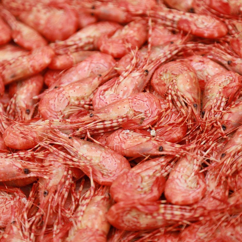 Famous Fresh Caught Shrimp